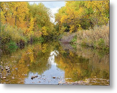 Fly Fishing Stream Reflections Metal Print by James BO Insogna