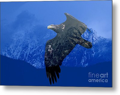 Fly Wild Fly Free Metal Print by Sharon Talson
