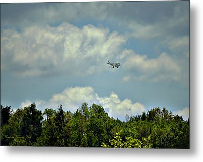 Flying Metal Print by Darlene Bell