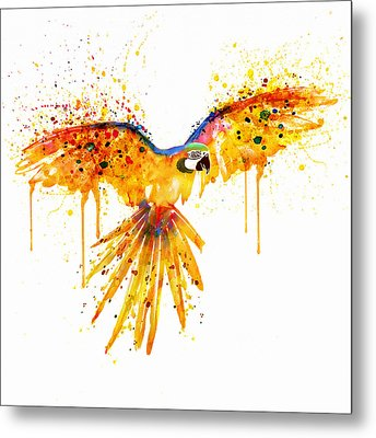 Flying Parrot Watercolor Metal Print by Marian Voicu