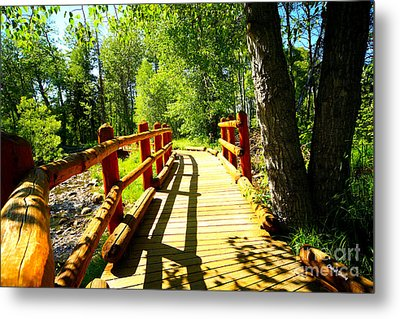Foot Bridge Metal Print by Cheryl Young