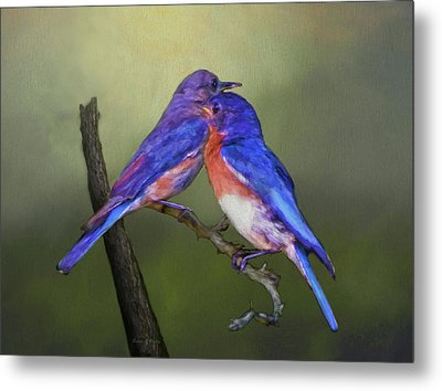 For Love Of Bluebirds Metal Print by Sandi OReilly