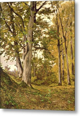 Forest At Fontainebleau Metal Print by Henri-Joseph Harpignies