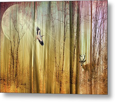 Forest Fantasy  Metal Print by Jessica Jenney