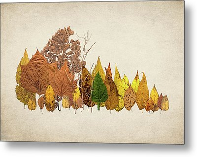 Forest Of Autumn Leaves I Metal Print by Tom Mc Nemar