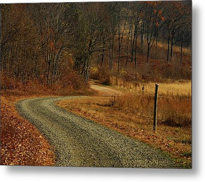 Forest Road Off At In Pa Metal Print by Raymond Salani III