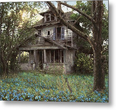 Forget-me-not Metal Print by Doug Kreuger