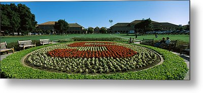 Formal Garden At The University Campus Metal Print by Panoramic Images