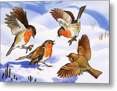 Four Robins In The Snow Metal Print by English School