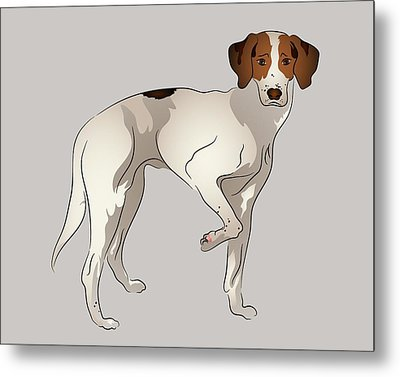 Foxhound Metal Print by MM Anderson