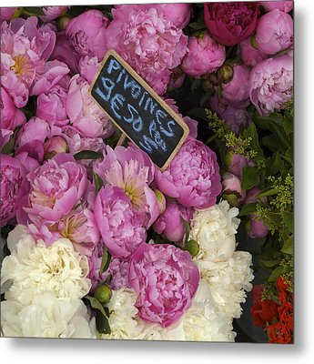 France, Paris Peonies Flowers Metal Print by Keenpress