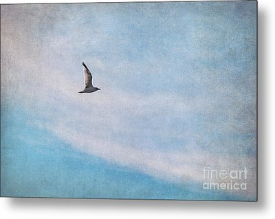 Freedom Metal Print by Angela Doelling AD DESIGN Photo and PhotoArt