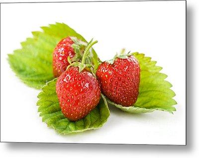 Fresh Strawberries Fruits Lying On Leaf On White  Metal Print by Arletta Cwalina