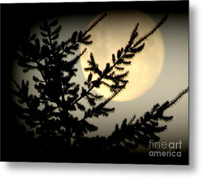 Full Moon Metal Print by Joyce Woodhouse