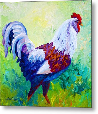 Full Of Himself - Rooster Metal Print by Marion Rose