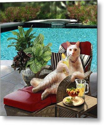 Funny Pet  Vacationing Kitty Metal Print by Regina Femrite