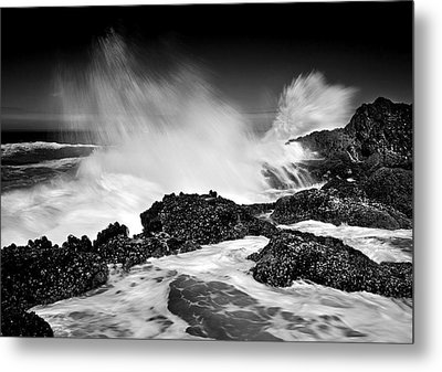 Fury Metal Print by Mike  Dawson