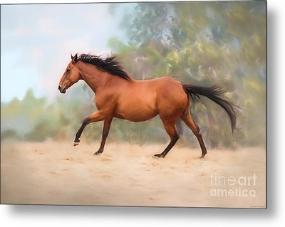 Galloping Thoroughbred Horse Metal Print by Michelle Wrighton