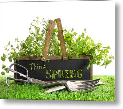 Garden Box With Assortment Of Herbs And Tools Metal Print by Sandra Cunningham
