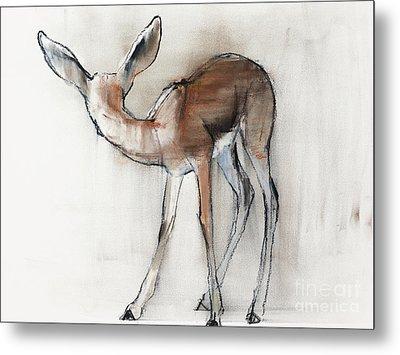 Gazelle Fawn  Arabian Gazelle Metal Print by Mark Adlington