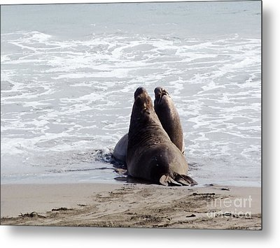 Get Off My Beach Metal Print by Methune Hively
