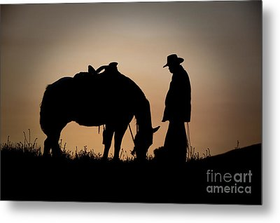Going Home Metal Print by Sandra Bronstein