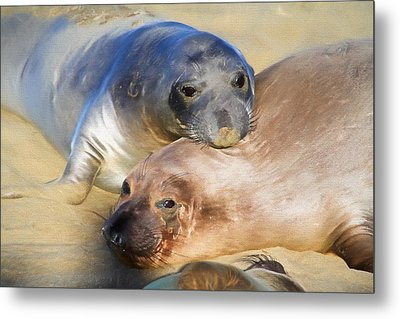 Gold And Silver Metal Print by Donna Kennedy