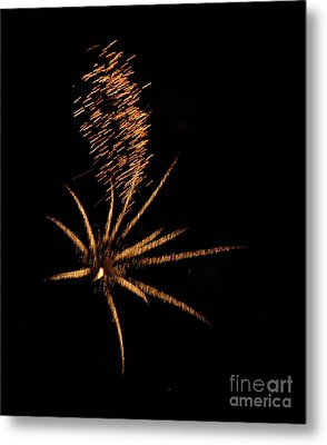 Gold Star Tail Metal Print by Norman  Andrus