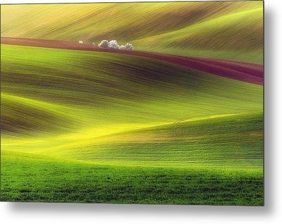 Golden Fields Metal Print by Piotr Krol (bax)