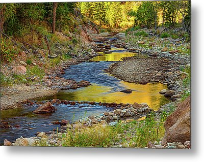 Golden Fishing Stream Metal Print by James BO Insogna