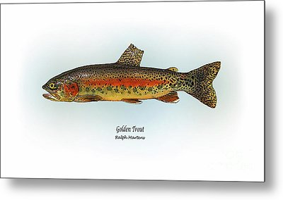 Golden Trout Metal Print by Ralph Martens