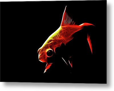 Goldfish 2 Metal Print by Tilly Williams