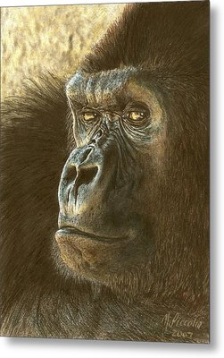 Gorilla Metal Print by Marlene Piccolin