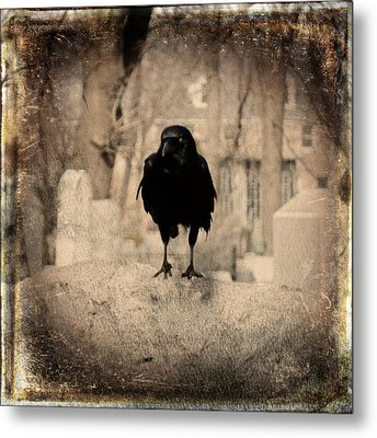 Gothic Sepia Crow Metal Print by Gothicrow Images