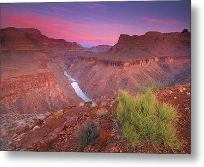 Grand Canyon Sunrise Metal Print by David Kiene