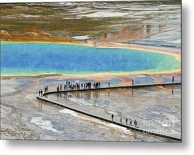 Grand Prismatic Spring Metal Print by Teresa Zieba