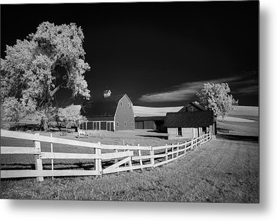 Grazing In The Palouse Metal Print by Jon Glaser