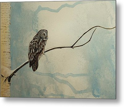 Great Gray Owl Metal Print by Lucy Deane