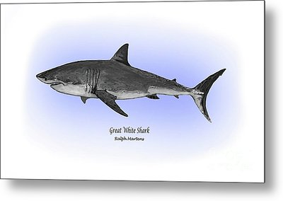 Great White Shark Metal Print by Ralph Martens