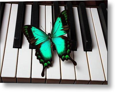 Green Butterfly On Piano Keys Metal Print by Garry Gay