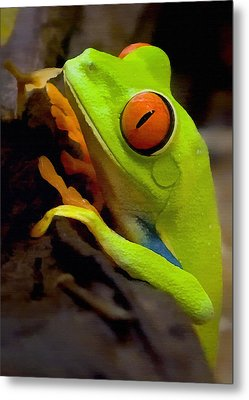 Green Tree Frog Metal Print by Sharon Foster