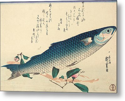 Grey Mullet, Camellia And Udo Metal Print by Hiroshige
