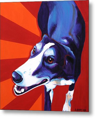 Lurcher - Evie Metal Print by Alicia VanNoy Call