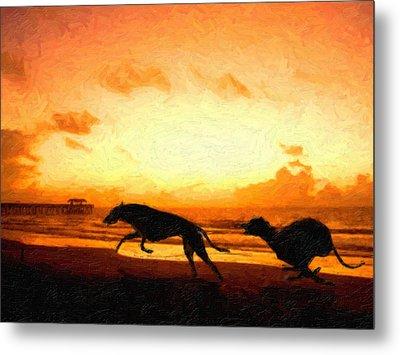 Greyhounds On Beach Metal Print by Michael Tompsett