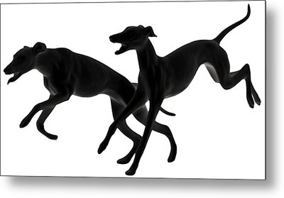 Greyhounds Travelling At 45 Mph Metal Print by Christine Till