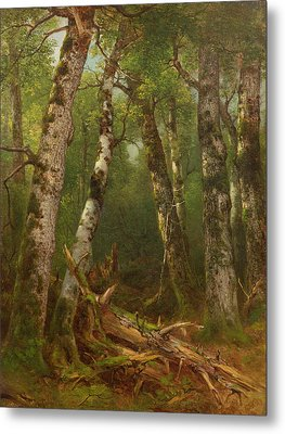 Group Of Trees Metal Print by Asher Brown Durand