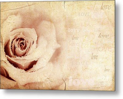 Grungy Rose Background Metal Print by Anna Om
