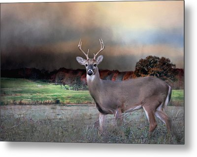 Guardian Of The West Field Metal Print by Jai Johnson