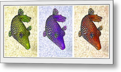 Guinea Fowl Puffer Fish Triptych Metal Print by Bill Caldwell -        ABeautifulSky Photography