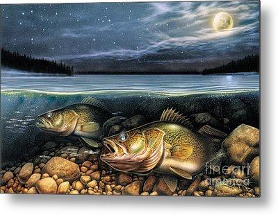 Harvest Moon Walleye 1 Metal Print by JQ Licensing